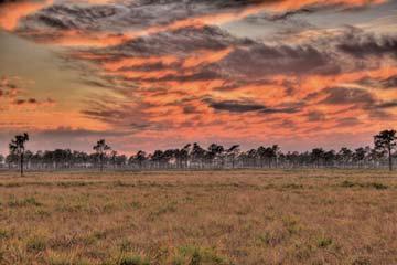 The Escape Ranch-Kenansville-Osceola County-Florida