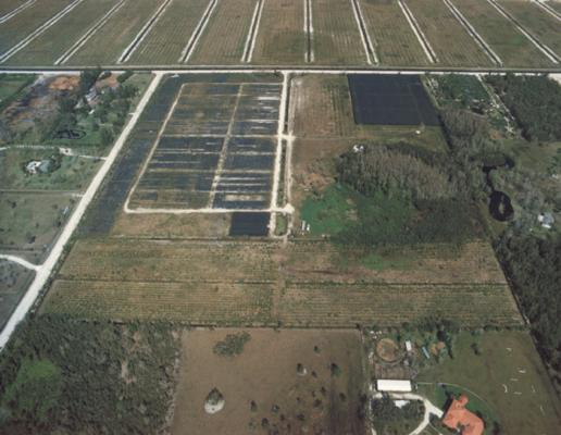 Agricultural Land-Wellington-Florida